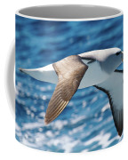Salvins Albatross Coffee Mug