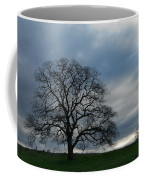 Same Tree Many Skies 10 Coffee Mug