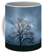 Same Tree Many Skies 14 Coffee Mug