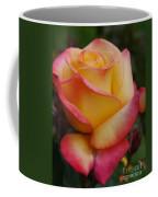 San Francisco Rose Garden Rose Coffee Mug