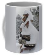 San Jacinto Balanced Rocks Coffee Mug