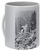 San Jacinto December Wilderness Coffee Mug
