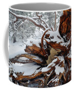 San Jacinto Fallen Tree Coffee Mug