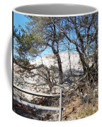 Sand Dune With Trees Coffee Mug