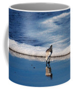 Sanderling 003 Coffee Mug
