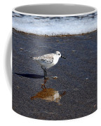 Sanderling 004 Coffee Mug