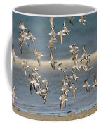 Sanderlings And Dunlins In Flight Coffee Mug