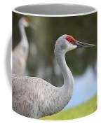Sandhill And Friend Coffee Mug