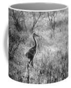 Sandhill Chick In The Marsh - Black And White Coffee Mug