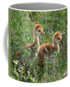 Sandhill Chicks Coffee Mug