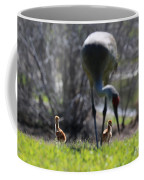 Sandhill Chicks Under Foot Coffee Mug