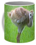 Sandhill Crane Chick I Coffee Mug