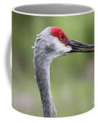 Sandhill Crane Closeup Coffee Mug