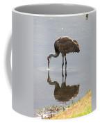 Sandhill Crane On Sparkling Pond Coffee Mug by Carol Groenen