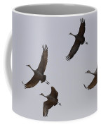 Sandhill Crane Quartet Coffee Mug