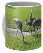 Sandhill Cranes Family Coffee Mug by Zina Stromberg