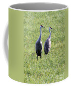Sandhill Cranes In Wisconsin Coffee Mug