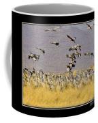 Sandhill Cranes On The Ground Coffee Mug