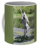 Sandhill Jumping Coffee Mug