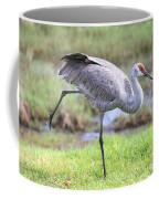 Sandhill Stretch 2 Coffee Mug