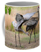 Sandhill Stretch Coffee Mug