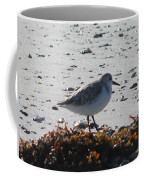 Sandpiper And Seaweed Coffee Mug