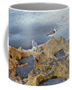 Sandpipers On Coral Beach Coffee Mug