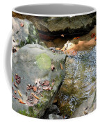 Sandstone Boulders At Hurricane Branch Coffee Mug