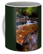 Sandstone Ledge Coffee Mug