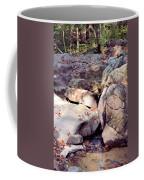Sandstone Coffee Mug