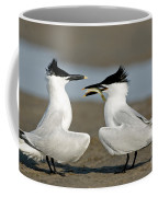 Sandwich Tern Offering Fish Coffee Mug