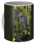 Sanibel Great Blue Heron Coffee Mug