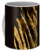 Santa Fe Grass 2 Coffee Mug