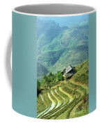 Sapa Rice Fields Coffee Mug