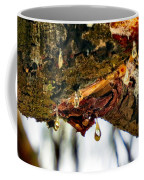 Sappy  Coffee Mug