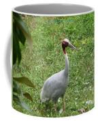 Sarus Crane Coffee Mug