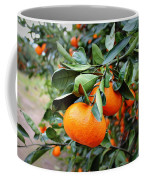 Satsumas Coffee Mug