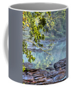 Savannah River In Spring Coffee Mug