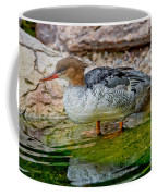 Scaly-sided Merganser Hen Coffee Mug