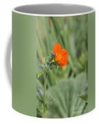 Scarlet Avens Orange Wild Flower Coffee Mug