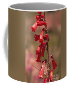 Scarlet Colorado Penstemons Coffee Mug