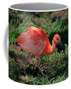 Scarlet Ibis Hybrid Coffee Mug