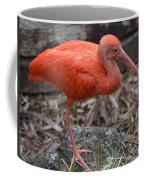 Scarlet Ibis One Legged Pose Coffee Mug