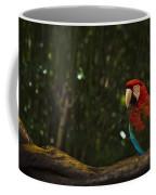 Scarlet Macaw Profile Coffee Mug