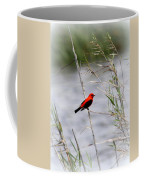 Scarlet Tanager - Coastal - Migration Coffee Mug