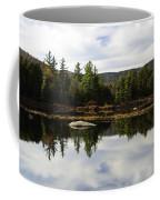 Scenic Lily Pond Coffee Mug