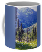 Scenic Mountain Valley Coffee Mug