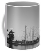 Scenic Swamp Cypress Trees Black And White Coffee Mug