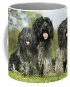 Schapendoes, Or Dutch Sheepdogs Coffee Mug