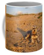 Schnauzer At Dawn Coffee Mug